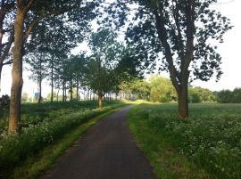 Riding into Ouderkerk