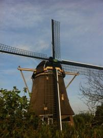 Always love seeing windmills